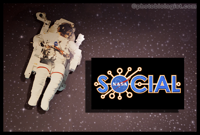 #NASASocial
