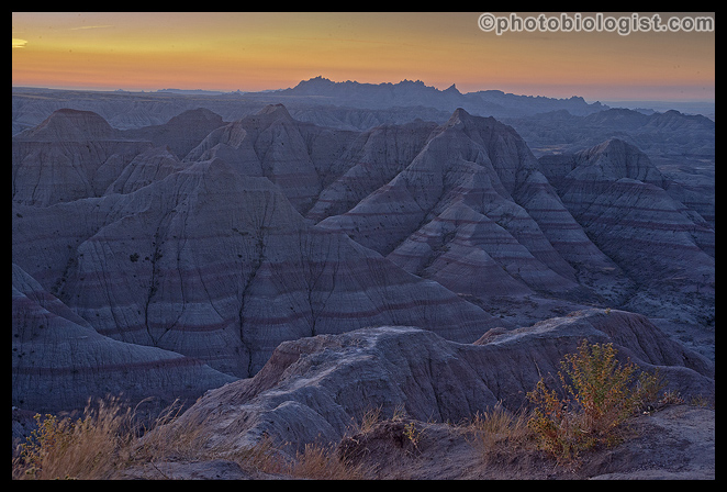 Before the sun came up in the Badlands.